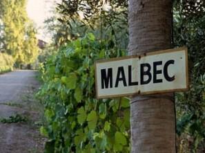 KYLIX: Malbec World Day